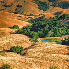 Golden Hills II by Steven Ainsworth