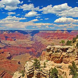 Lisa Woodburn - Grand Canyon Vista