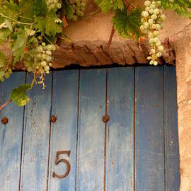 Lainie Wrightson - Grapes Over Blue Door