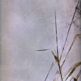 Judi Bagwell - Grass and Wall