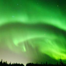 John Aldabe - Green Swirls