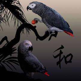 IM Spadecaller - Grey Parrot Harmony