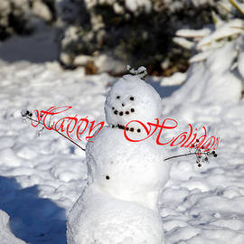 Skip Willits - HAPPY HOLIDAYS SNOWCHILD