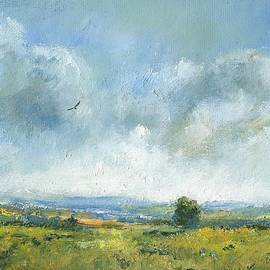Hawk over the Yar valley by Alan Daysh