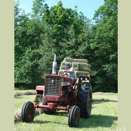 Haying by Patricia Overmoyer