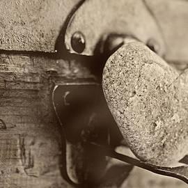 Heart of stone by Toni Hopper
