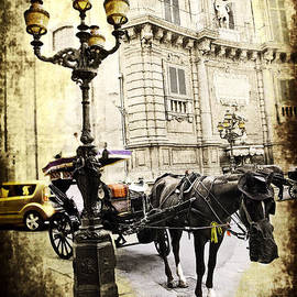 Horse and Buggy - Palermo by Madeline Ellis