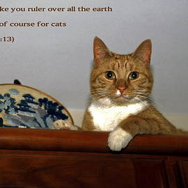 Sally Weigand - I Shall Make You Ruler