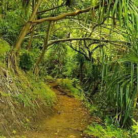 John  Greaves - Kakakau Trail Green