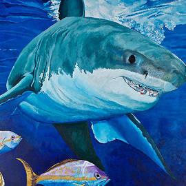 Kids Love Sharks by Terry Gill