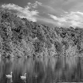 David Dehner - Late Afternoon at the Lake - BW