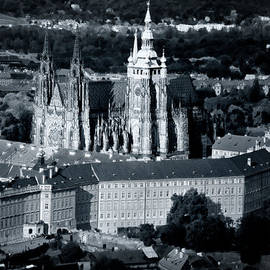 Joan Carroll - Light on the Cathedral