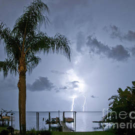 Backyard Lightning by Stephen Whalen