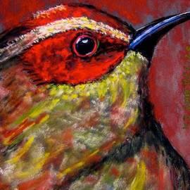 Kathryn Barry - Little Belize Bird