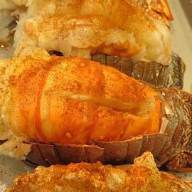 Kay Novy - Lobster Fest