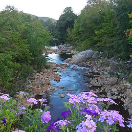 Nancy Griswold - Mad River Going South of Campton New Hampshire