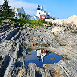 Jeanne  Woods - Maine Lighthouse