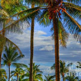 Kelly Wade - Maui Coconut Palms