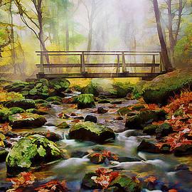 Morning Light by Darren Fisher