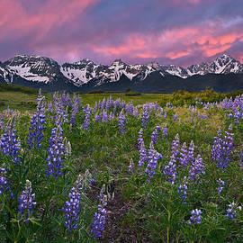 Guy Schmickle - Mountain Meadow
