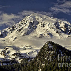 Heather Applegate - Mt Rainier