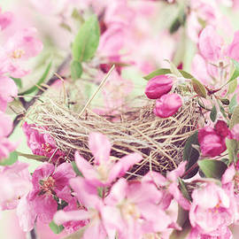 Stephanie Frey - Nest in Soft Pink
