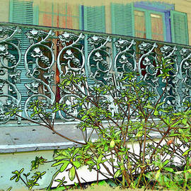 Joan  Minchak - New Orleans Porch Railing