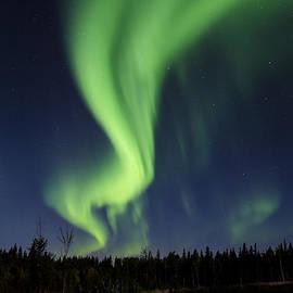 Steve  Milner - Night Lights