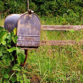 Marilyn Smith - No Mail Today