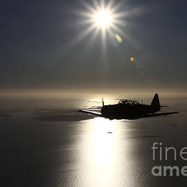North American T-6 Texan Trainer by Daniel Karlsson