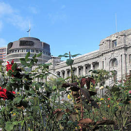 NZ Parliament and Beehive by C H Apperson