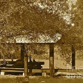Old Lumber Mill by Carol  Bradley