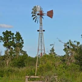 Old Windmill by Carol  Bradley