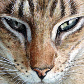 Oriental cat by Svetlana Ledneva-Schukina