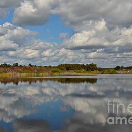 Partly Cloudy by Carol  Bradley