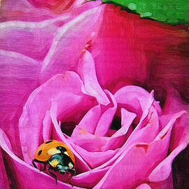 Susan Lee Giles - Pink Rose and Lady Bug