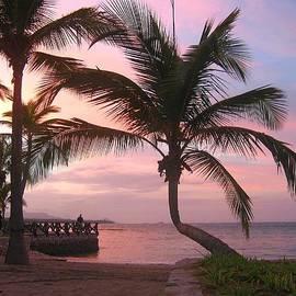 Playa Dorada Sunset 0681