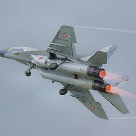 Tim Beach - Polish Air Force MiG-29