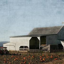 Pumpkin Farm by Kim Hojnacki