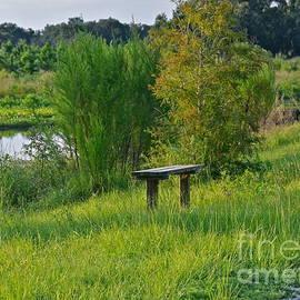 Quiet Place by Carol  Bradley