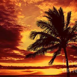 Teresa Zieba - Red Hawaiian Sunset