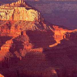 Red Stones At Sunset Grand Canyon by Rima Biswas