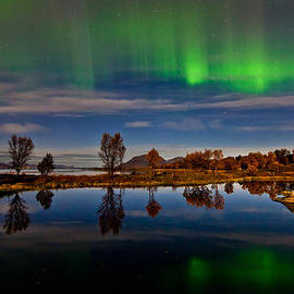 Frank Olsen - Reflections in the pond