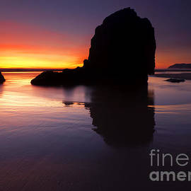 Reflections of the Tides by Mike  Dawson