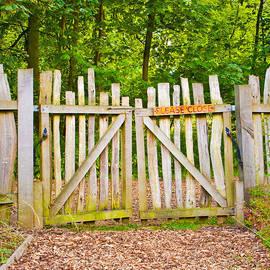 Tom Gowanlock - Rickety gate