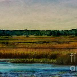 Judi Bagwell - River of Grass