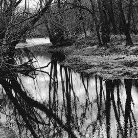 Paul Young - River Reflection