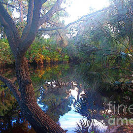 Riverbank Reflections1 by Herb Paynter