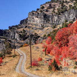 Gary Whitton - Fall - Blacksmith Fork Canyon - Utah