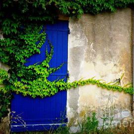 Lainie Wrightson - Robust Vine on Blue Door